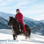 ski jøring with Icelandic horse in Valais