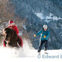 ski joring Icelandic horses Valais Switzerland