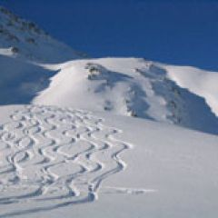 Engelberg powder skiing