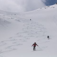 Gran Paradiso ski