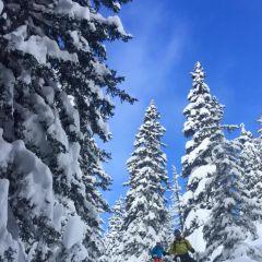 Off piste met berggids Marécottes Zwitserland